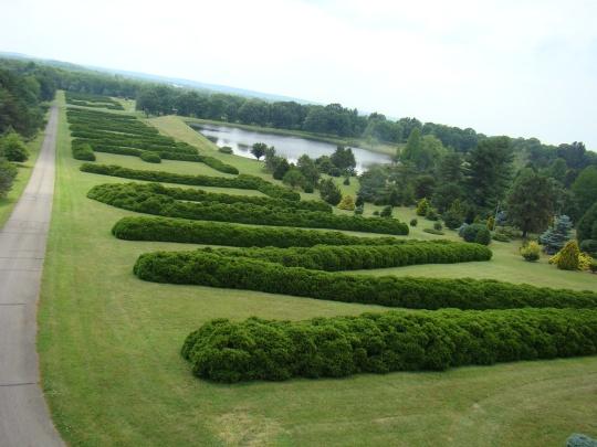 Large Hedge spells our Dawes Arboretum.
