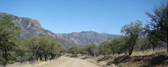 New Mexico 067