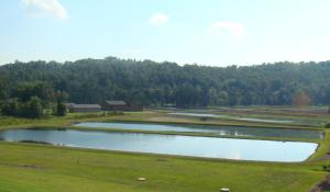 Senecabille State Fish Hatchery