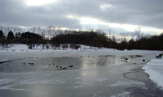 Jackson Park near Byesville provides a scenic place to walk on a winter day.