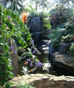 Peaceful Annie's Pond