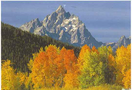 Welcome to the majestic Tetons.