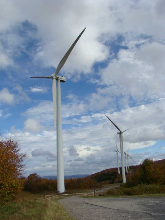 Nearby Mountaineer Wind Energy Center generates electricity.