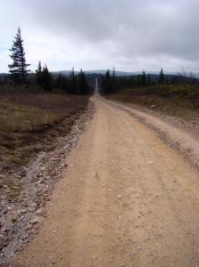Narrow dirt road to Dolly Sods