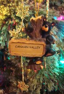 A bear from Canaan Valley is my newest ornament.