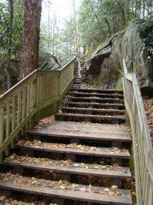 Steps at Blackwater Falls