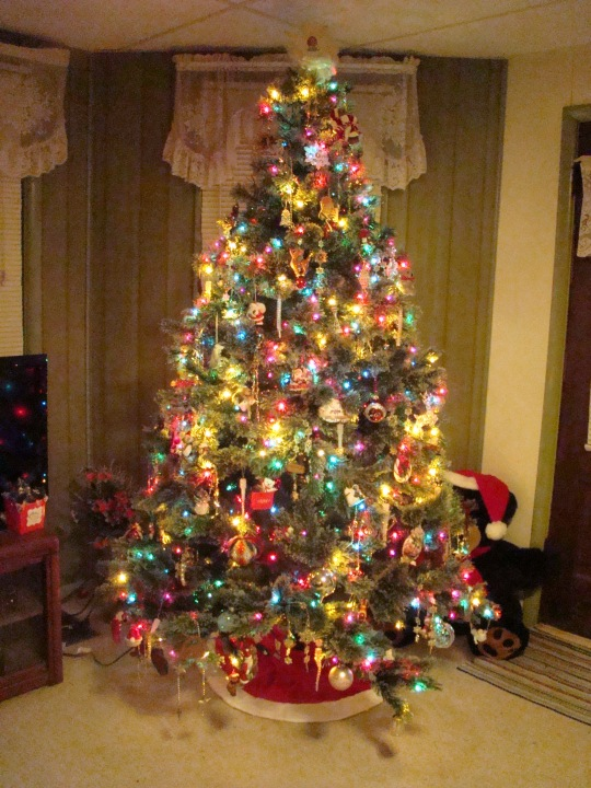 My Gypsy Tree lights up the evening.