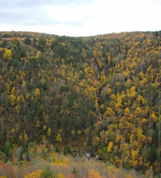 View of Elakala Falls from across the valley with State Park Lodge in the upper left hand side
