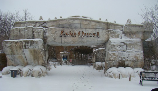 Snow covered Asian Quest very soon.
