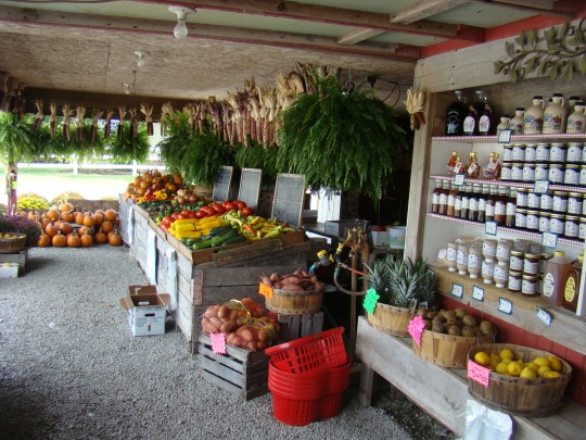 Millers' Fruit Stand displayed fresh fruits and vegetables.