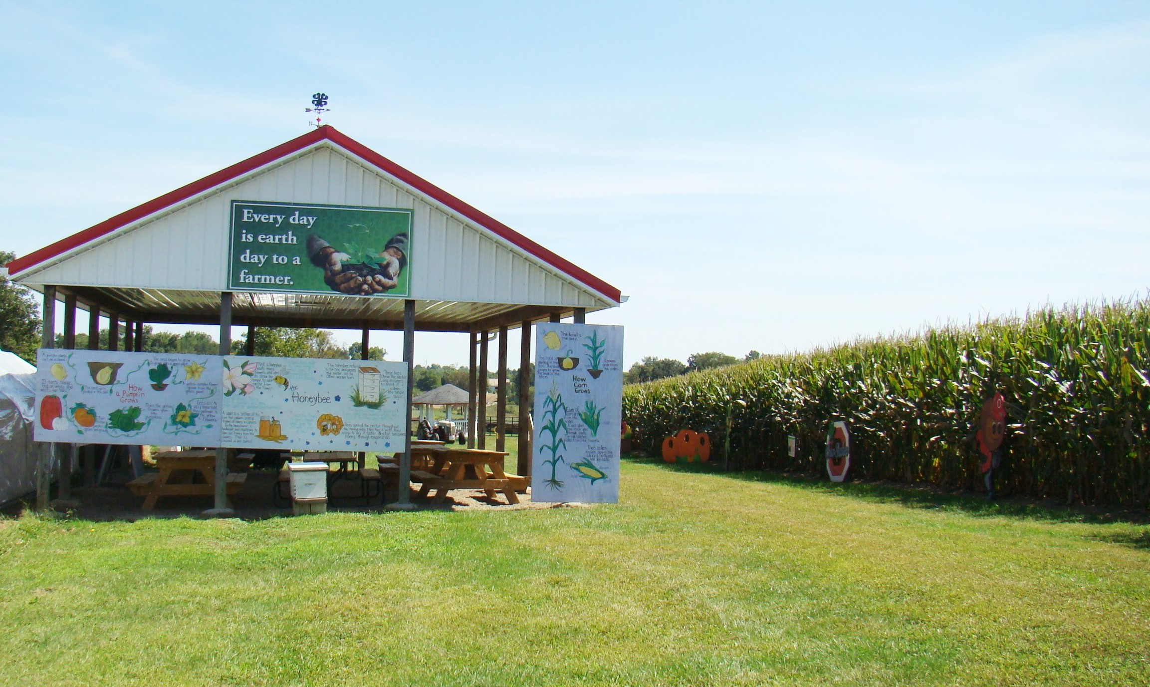 A play area along side the corn maze offers many possibilities to explore.