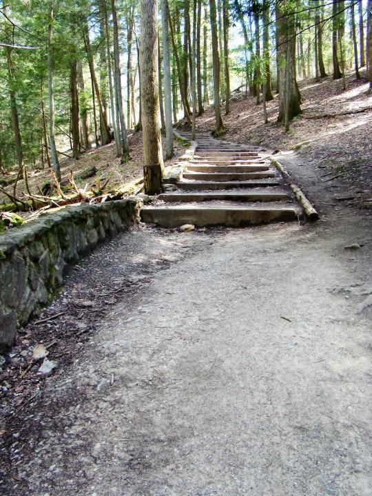 Cedar Falls steps