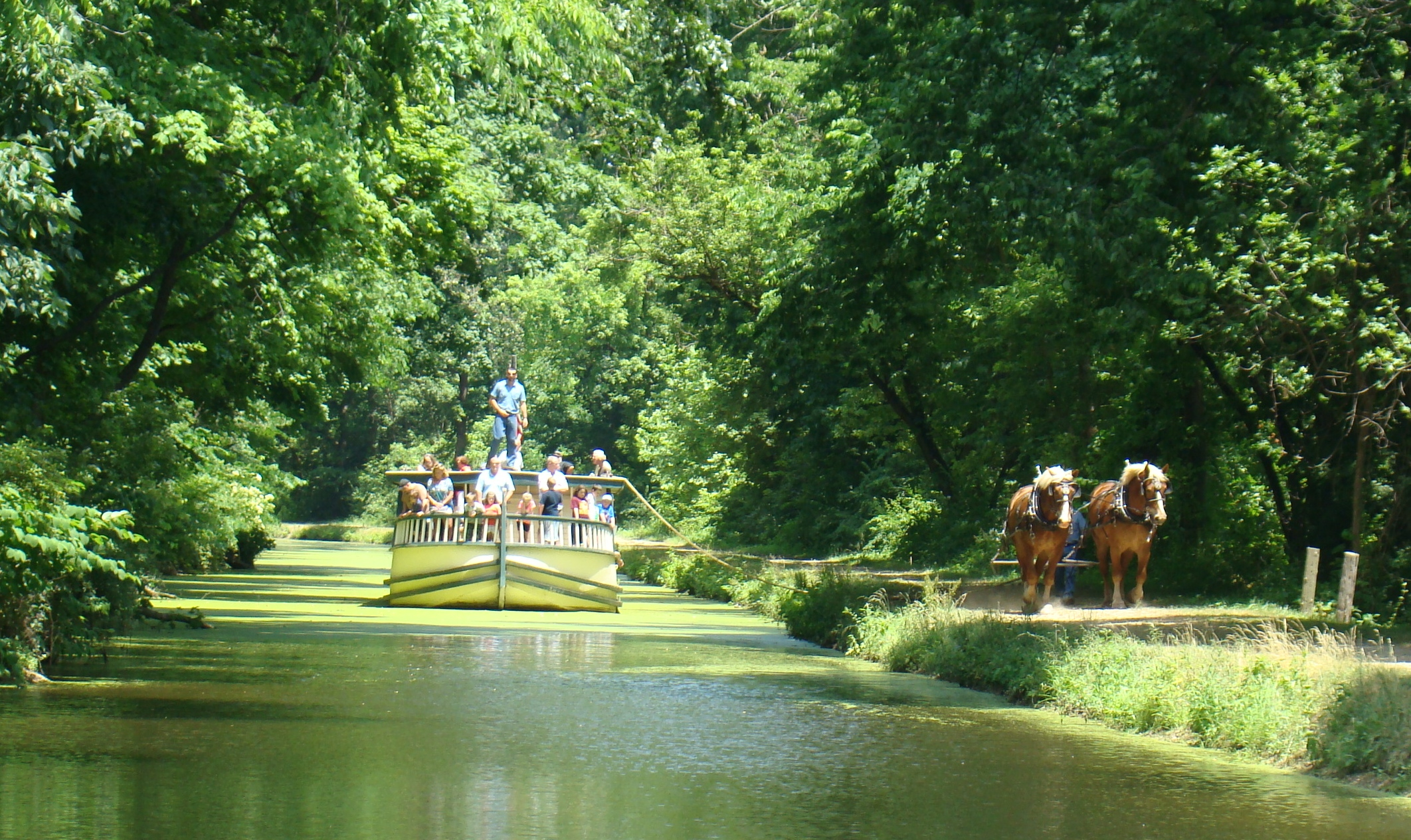 Monticello on the canal