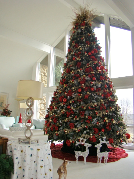 Bonnie Big Tree