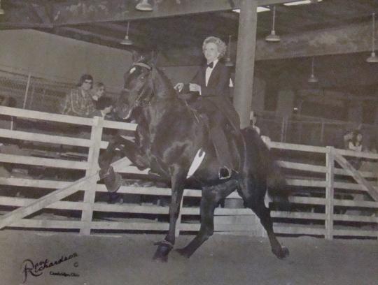 Bonnie Showing Horses