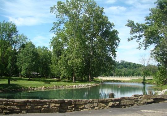 Velvet Pond