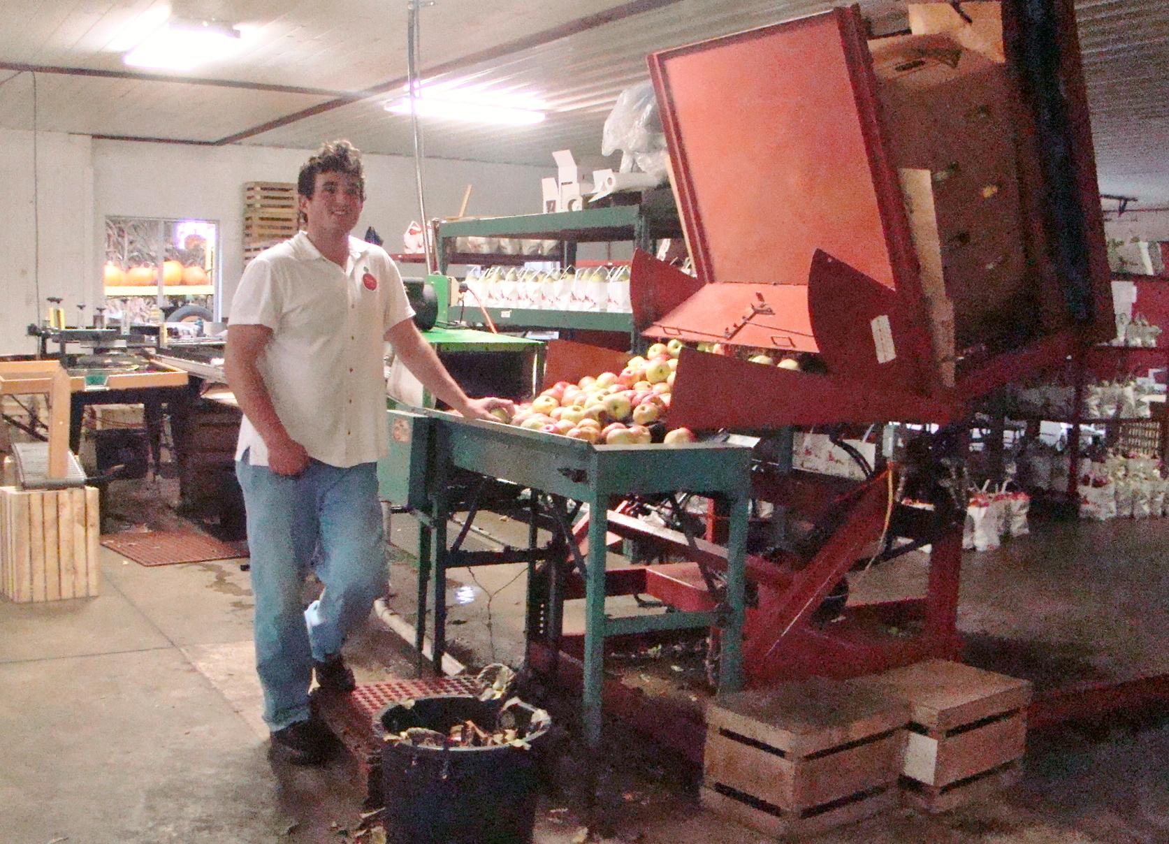 Hillcrest Apple sorter