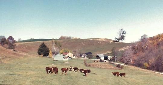 Robinson farm 001
