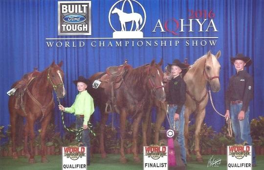 Robinson horse show 002