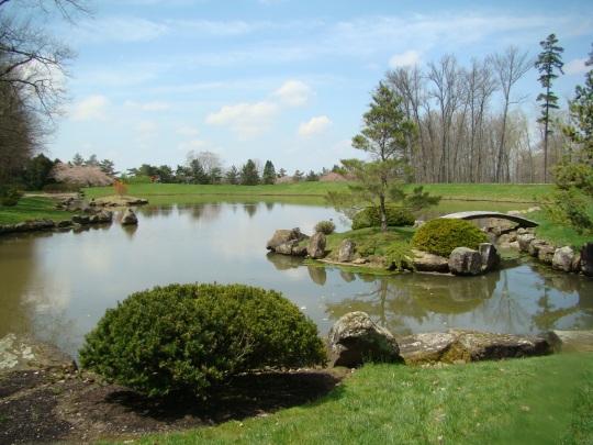 Dawes Japanese Garden
