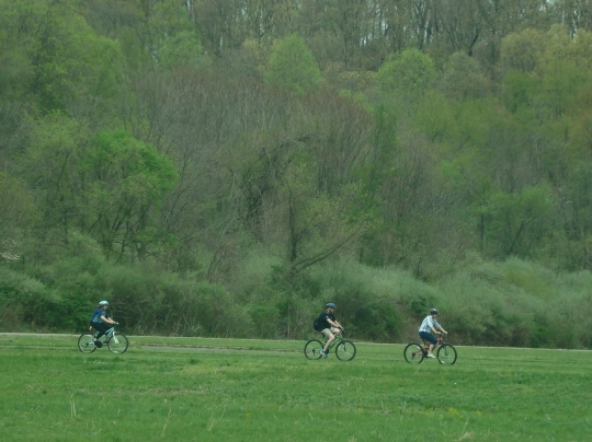Salt Fork Bicycling