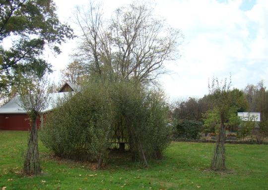 Howard Willow Dome