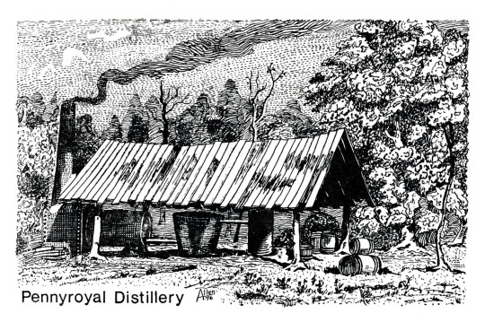 Pennyroyal Distillery Postcard