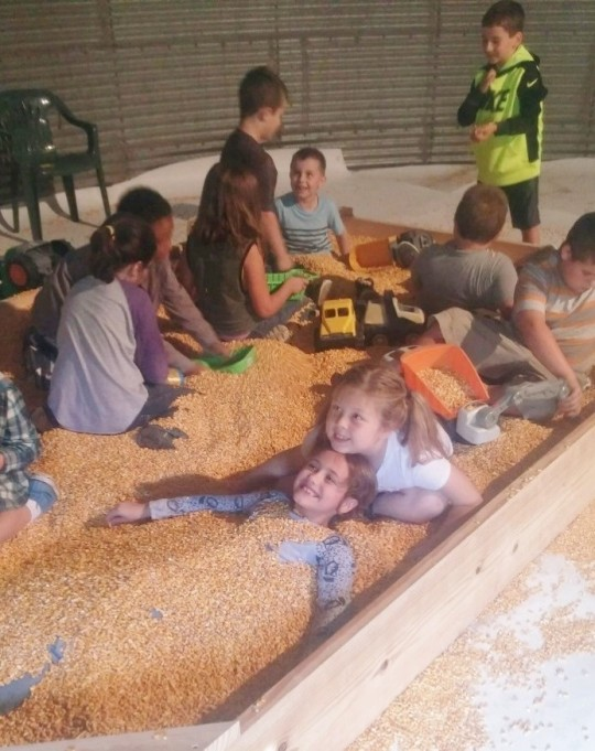 Schumaker Corn Bin