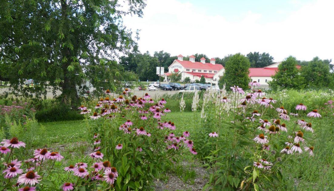 Smucker's Pollination Garden