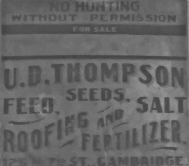 Emma Thompson Feeds