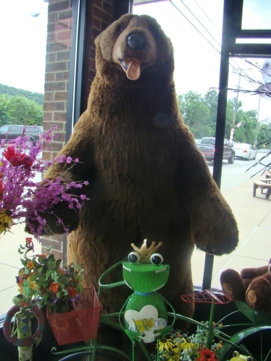 Sarris Bear