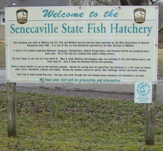 Hatchery Welcome Sign