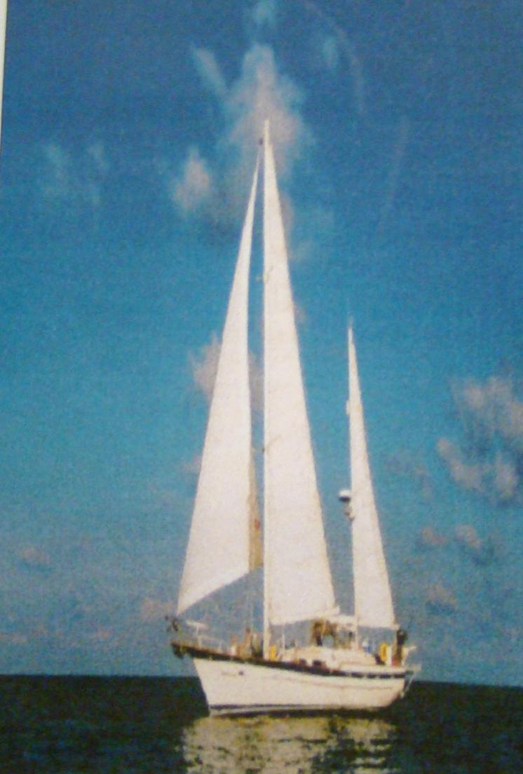 Captain - Yacht