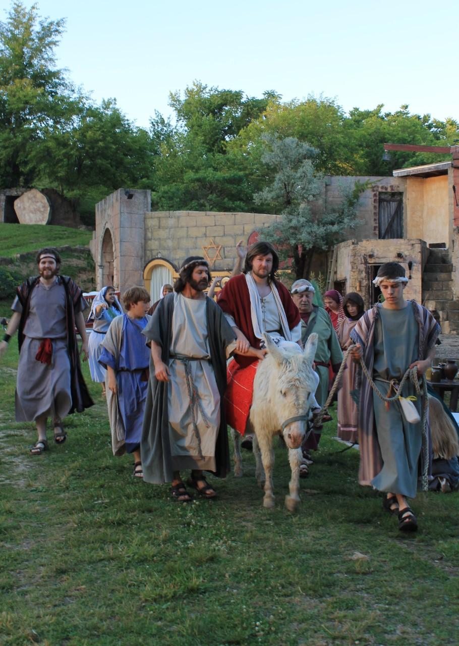 LW Jesus on Palm Sunday