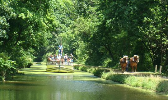 Roscoe Ohio Erie Canal