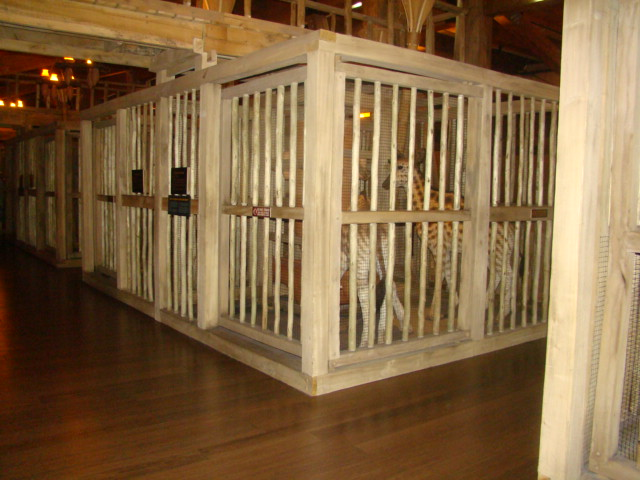 Ark Giraffe cages