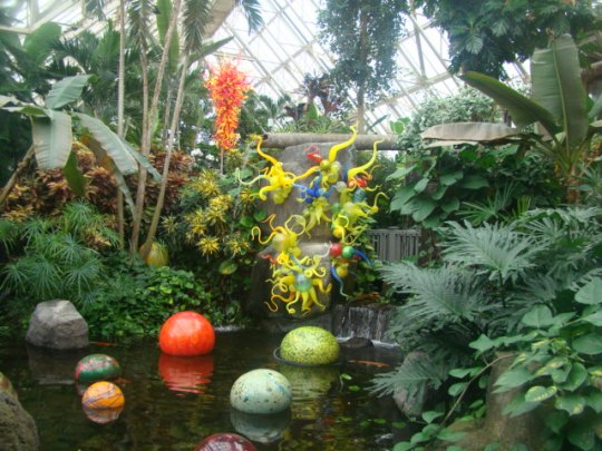 Chihuly Annie's Pond