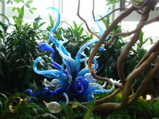 Chihuly Blue Garden Fiori