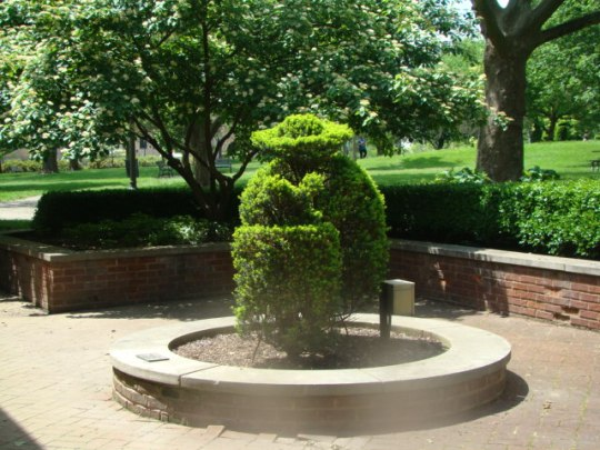 Topiary - Lady reading outside gift shop